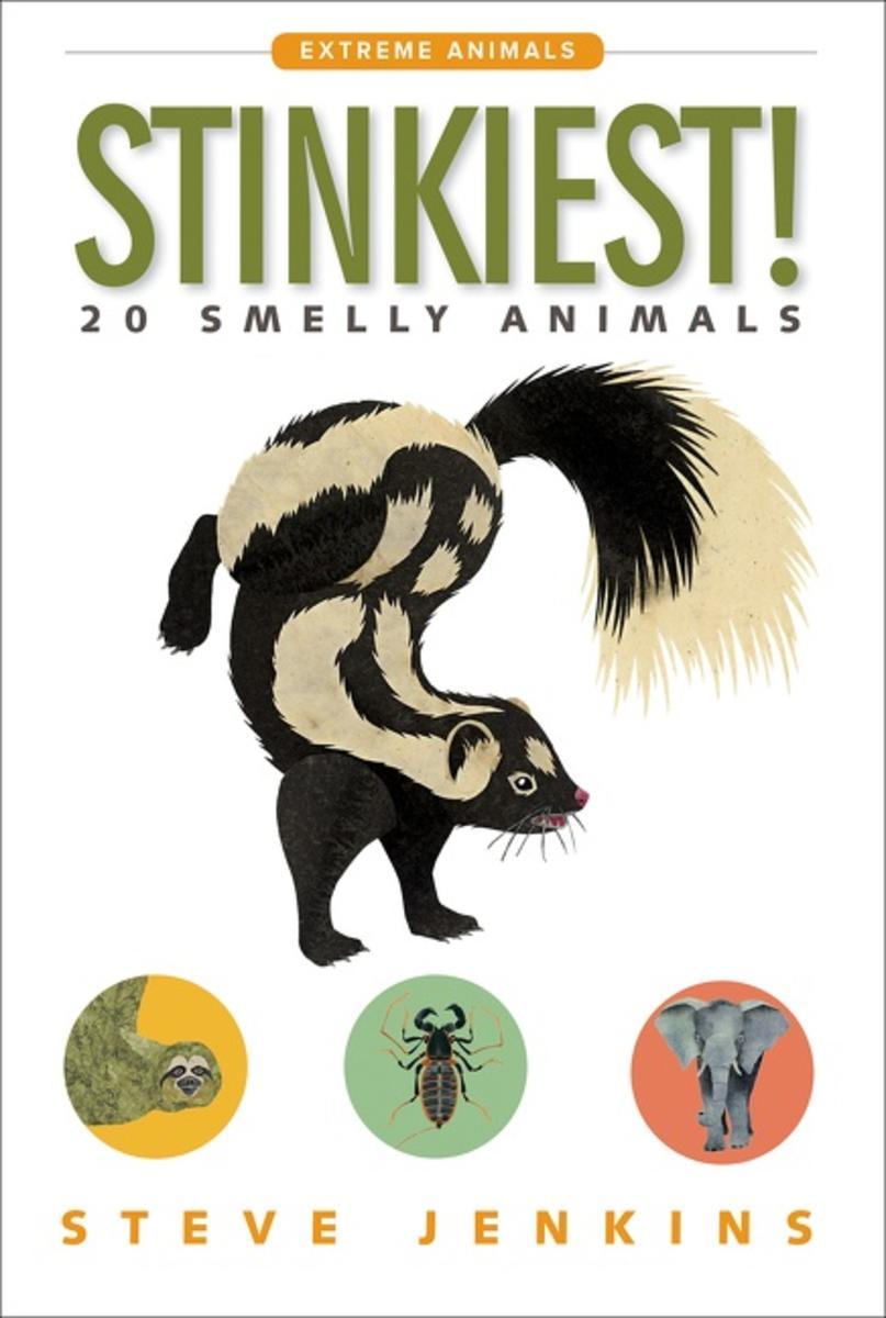 Stinkiest_